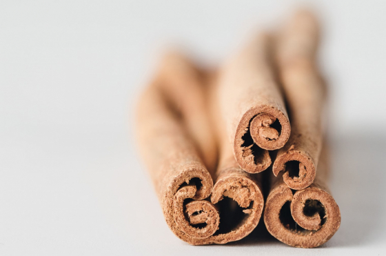 ORGANIC CINNAMON BARK, AN ESSENTIAL HYDROSOL FOR YOUR AUTUMN DISHES